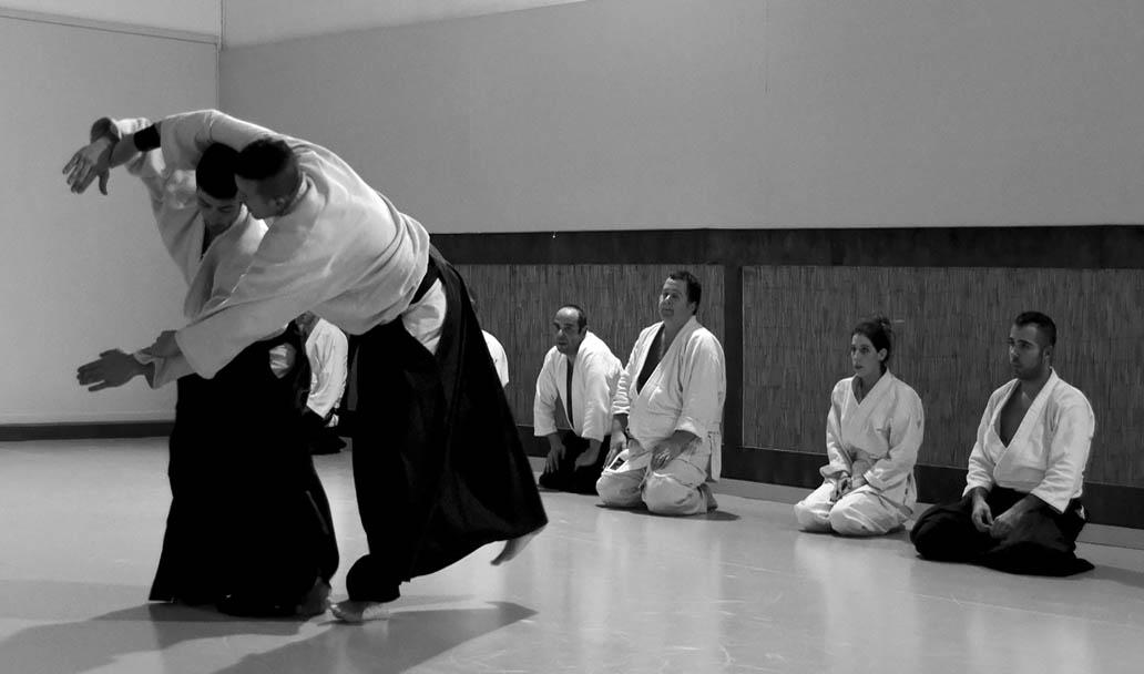 Taller de Aikido