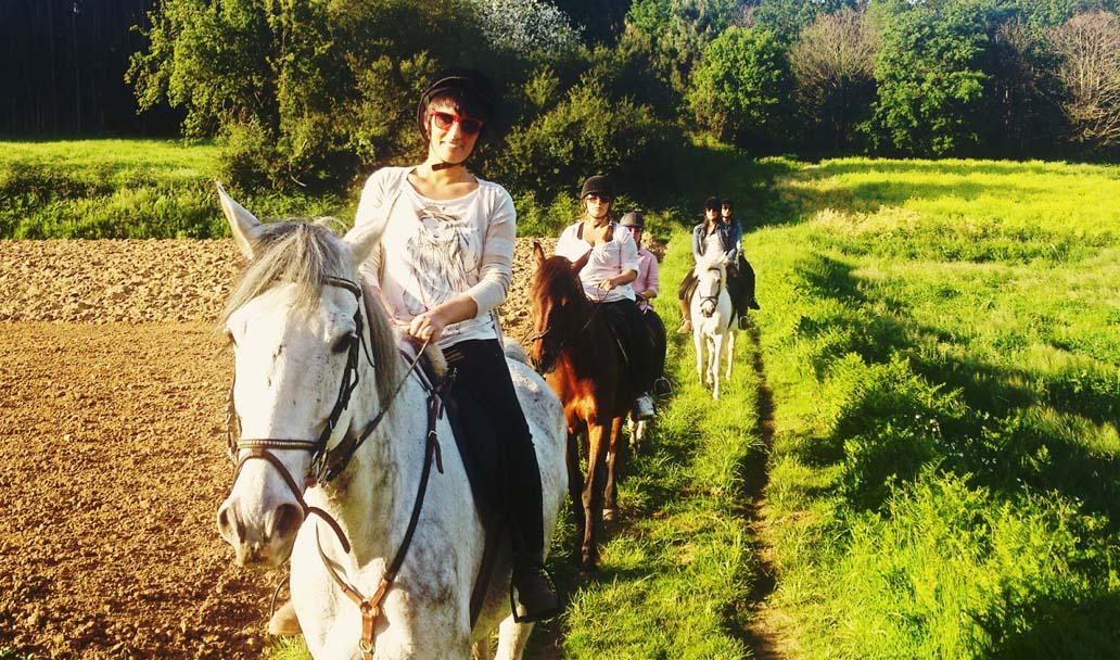 ruta caballo 7