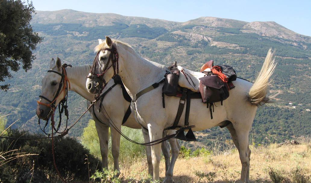 rutas a caballo 6