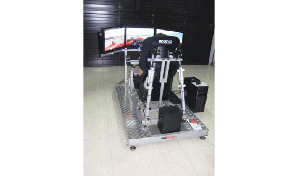 simulador Rally 2